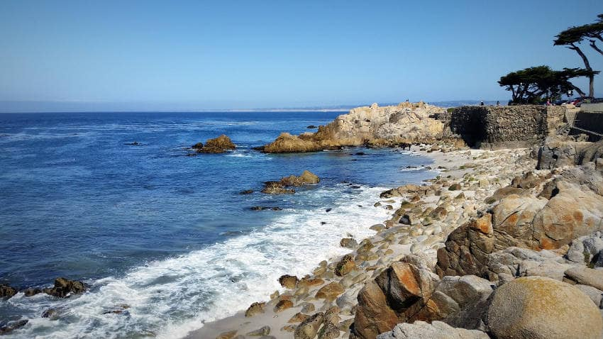 Monterey Vegan