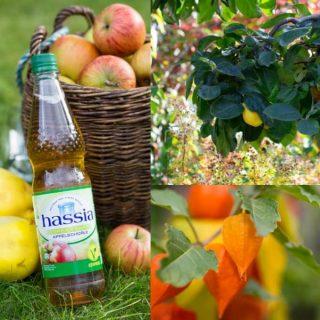 Goldener Herbst & vegane Schorlen von hassia