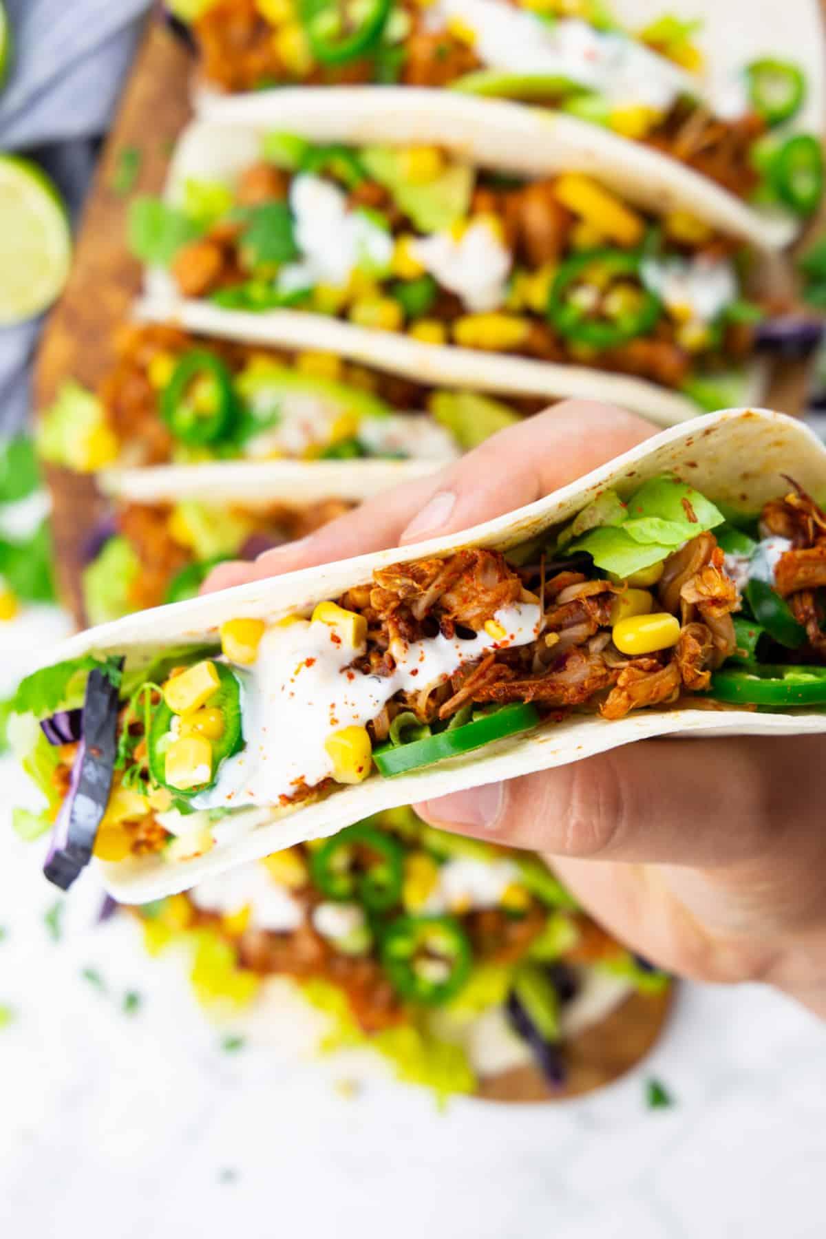 eine Hand, die einen Jackfruit Taco hält mit mehr Tacos im Hintergrund