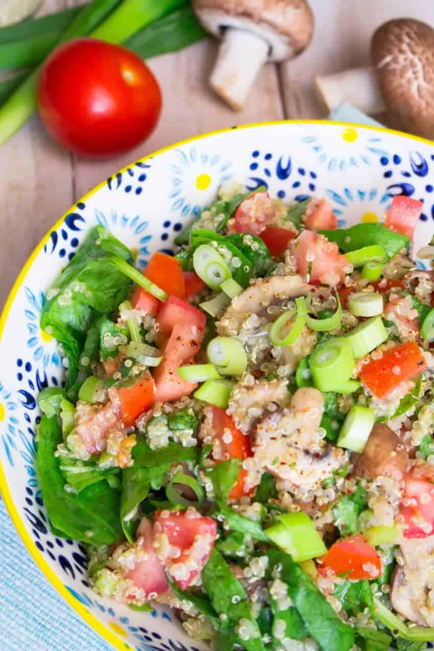 Quinoa Salat mit Tomate, Pilzen und Spinat in einem bunten Teller